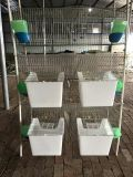 Cage Rabbit Hutch for Mother and Baby Rabbit
