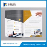 Full Color A4 Paper Brochure Printing