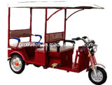 48V 850W Electric Passenger Tricycle (ETR-02)