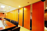 Sliding Partition Wall for Hotel/Conference Hall/Multi-Purpose Hall