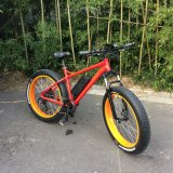 Fat Tire Electric Bicycles for Men