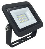 Driverless Eco LED Floodlight with Ce
