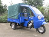 2015 New Motorized Three Wheel Cargo Tricycle