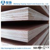 6-18mm Commercial Plywood Sheet at Wholesale Price