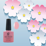 Most Popular Private Label Professional UV Gel Nail Polish