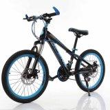 Factory Online Fashion Mountain Bike for Children
