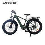 Queene/26 Inch Fat Tire Electric Bike Electrical Bicycle Snow Beach Cruiser