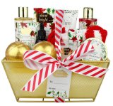 Christmas Body SPA Essential Oil Bath Bomb Shower Gel Gift Set Wire Basket