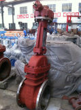 API600 Class150 Gear Worm Operated Carbon Gate Valve (Z41H-150LB-DN450)