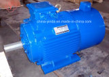 1HP-270HP Tefc (IP54) Inverter Duty Electric Motor