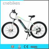 2017 Most Popular 37.5 Electric Mountain Bicycle E Bike