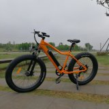 Big Power 48V Mountain Electric Bike