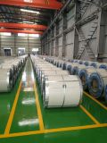 Color Coated PPGI Steel Coil