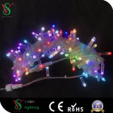 LED Changing Color Bulb String Light for Decoration Project