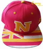 Wholesale Price Custom Embroidered 3D Embroidery Snapback Caps