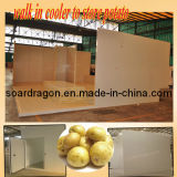Cold Storage for Potato Storage (OEM design) (WGL-DCWR50)