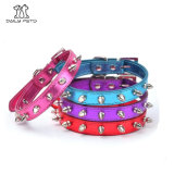 Hot Sale Pet Supply Colorful Rivet Dog Collar