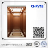 Sightseeing Home Villa Passenger Lift for Residential Building