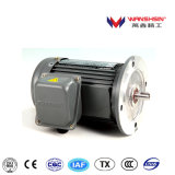 Medium Gear Motor+Reducer for Animal Husbandry Equipment