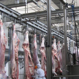 Cattle Cow Slaughtering Equipment/Halal Slaughter