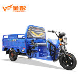 Jiangsu Electric Cargo Tricycle Vehicle for Food Transportation