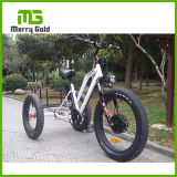 500W Three-Wheel Fat Tire Ebike Electric Tricycle for Sale