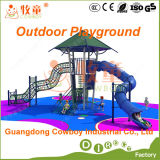 Outdoor Playground Set with Swing Slide (WOP-046B)