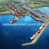 Consolidation Sea Freight From China to Hamburg