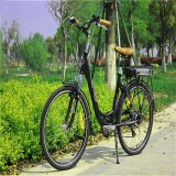 Ce/EEC/DOT 36V 250W Electric Bicycle Lithium Battery (RSD-203)