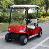 Marshell 2 Seater Golf Car for Golf Course (DG-C2-8)