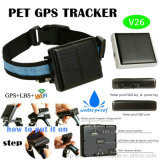 Solar Charging GPS Tracker Device for Pets (V26)