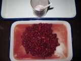 Canned Dark Red Kidney Bean in Brine