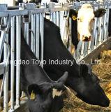 Cattle Farm Equipment Head Lock