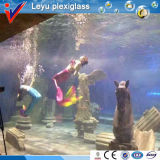 Plastic Organic Glass for Mermaid Driving Pool
