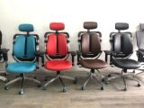 Modern Design Fabric Seat Ergonomic Mesh Chair Office Chair with Armrest, Mesh Office Chairs for Office