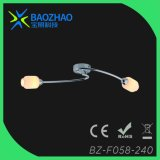 G9 Light Source Max 40W Ceiling Light