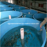 Customized FRP Fish Tank, Customized Fiberglass Fish Tank