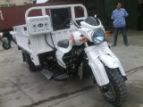 Three Wheeler Motorbike for Heavy Cargo Carrying with CCC Certification