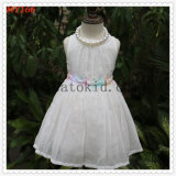Sweet Girls Embroidered Flower Organza Tulle Dress for Communion Dress