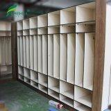 Z Shape Door HPL Laminate School Cabinet Gym Lockers