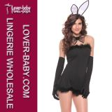 Sexy Lingerie Match Set Adult Bunny Costume (L1106)