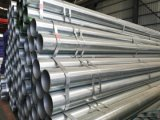 ERW Steel Pipe Galvanized Tube