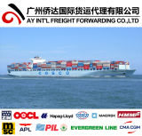 Sea Freight From China to Namibia