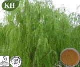 Top Grade White Willow Bark Extract Salicin 15% ~98%