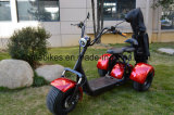 1500W Electric Motorcycle with Golf Bags Holder