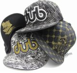 Fashion Flat Hiphop Snapback Cap with 3D Embroidery and Printing Pattern