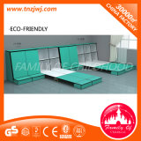 Ce Certificated Kids Wall Beds with Storage Cabinet for Sale