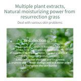 Natural Moisturizing Nourishing Personal Care Beauty Skin Care Whitening Lotion