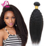 Brazilian Human Remy Yaki Straight Hair Weft Wholesaler