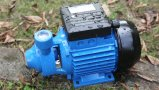 0.5HP Electric Casting Peripheral Pump with Ce for Homeuse (QB60)